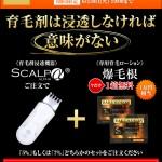 「爆毛根」1箱無料キャンペーン終了6/30(火)迫る!